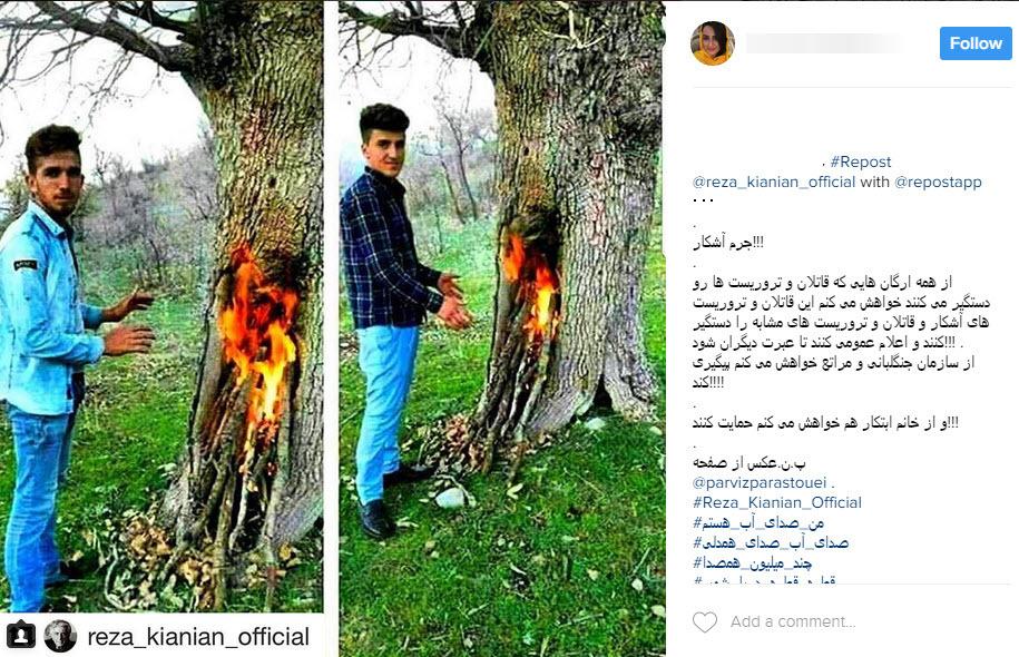 عکسی که صدای هنرمندان و کاربران شبکه های اجتماعی را درآورد
