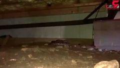 مرد جوان هنگامی که وارد زیرزمین خانه اش شد شوکه و وحشت زده فرار کرد+ فیلم
