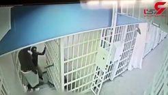 این پلیس بدجوری کتک خورد! + فیلم لحظه حادثه