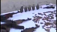 وزارت اطلاعات از دستگیری 2 تیم وارداتی ضد انقلاب در غرب کشور خبر داد  +فیلم