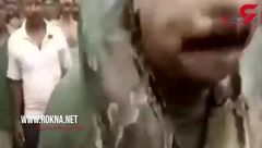 لحظه وحشتناک پیچیدن مار پیتون به دور گردن یک مرد! + فیلم