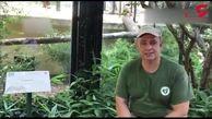 جولان 3 پلنگ ایرانی در ایتالیا+ فیلم