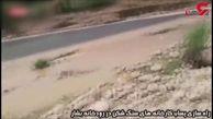 رهاسازی پساب کارخانههای سنگ شکن در رود بشار +فیلم