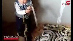 بازی وحشتناک یک کودک با مارهای سمی+فیلم و عکس