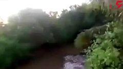 لحظه وحشتناک حمله تمساح غول پیکر به یک مرد در رودخانه در مقابل مردم +فیلم