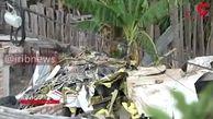 نخستین فیلم از سقوط هواپیما در کلمبیا / 7 مسافر کشته شدند