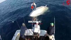 سرنوشت باورنکردنی 2 ماهی گیر در دریا+فیلم