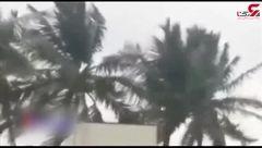 وقوع طوفانی شدید در هند + فیلم