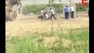 عاملان حمله به پادگان نیروهوایی ارتش دستگیر شدند+ فیلم
