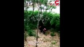 آبپاش شهرداری این جوان را هنگام کثافتکاری پشت شمشادها غافلگیر کرد! + فیلم