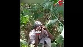 گریه های یک کشاورز پس  حمله ملخ ها به مزرعه اش+ فیلم