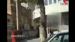 کم سن ترین دزدان مسلح طلافروشی ارومیه دستگیر شدند + فیلم