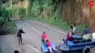 عجیب ترین و خندهدار ترین حادثه رانندگی + فیلم