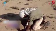 اینجای ایران  قدم بزنی زنده نمی مانی! / مرگ های دردناکی که فریاد می زنند! + فیلم