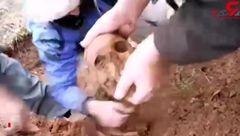 لحظه تلخ پیدا شدن تکه های استخوان شهدا در کردستان عراق + فیلم