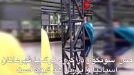 فوتسالیست ایرانی در قفس ببر!+فیلم