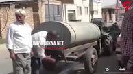 ماجرای عجیب حمله حشره های مدیترانه ای به شهرستان تفت+فیلم