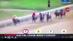 حادثه در عجیب ترین مسابقه اسب سواری در تاریخ + فیلم