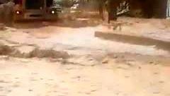 اتفاقی عجیب در سیل شیراز / تشویق پسر جوان به پریدن در سیلاب+ فیلم