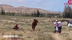 یک دختربچه هدف حمله عقاب قرار گرفت+فیلم