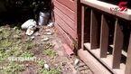 فرار از خانه بخاطر حمله زنبور های عسل +فیلم