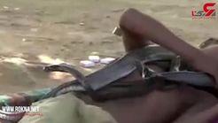 تفریح خطرناک پسر ۷ ساله هندوستانی با مارها! +فیلم