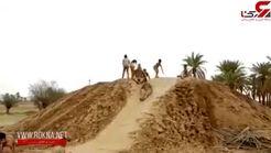 تفریح عجیب جوانان پس از بارش باران در بوشهر + فیلم