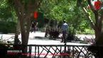 دستگیری زنی با مانتوی قرمز در حرم امام / + فیلم انفجار انتحاری و ... 16+
