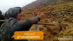 اشک شوق پیرمرد یزدی از آشتی آب با کویر +فیلم